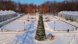 Konecki park pod śniegiem wygląda przepięknie. Zobacz zdjęcia z drona