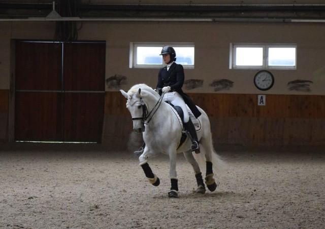 W Jeździeckim Ośrodku Szkolenia Olimpijskiemu w Zakrzowie znajdziemy nie tylko dwie kryte ujeżdżalnie i dużo pięknych koni, ale również między innymi basen, pokoje hotelowe czy salę konferencyjną na 1000 osób.