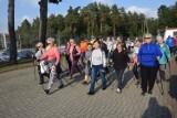 W sobotę odbył się IV Rajd Seniorów Powiatu Lęborskiego nordic walking