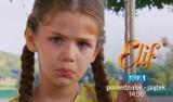 Elif, odcinek nr 1078 - streszczenie. Co będzie w najbliższym odcinku serialu Elif w TVP. Co się wydarzy? [online serial - Elif 25.10.2021]