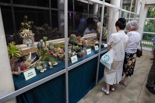 Wystawa kaktusów w Ogrodzie Botanicznym