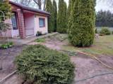 Oto ogródki działkowe ROD na sprzedaż w Inowrocławiu i okolicach. Jakie można kupić? Ile kosztują działki? Zobacz oferty z serwisu OLX.pl