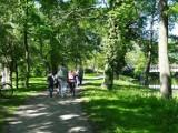 Park przy międzyrzeckim zamku to ulubione miejsce spacerów nawet najmłodszych mieszkańców miasta. Jest tu pięknie i bezpiecznie