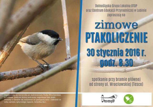 Zimowe Ptakoliczenie w parku Wrocławskim!
