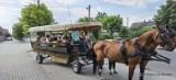 Wakacyjne przejażdżki tramwajem konnym po Zelowie. Przewodnik opowiada też o historii miasteczka