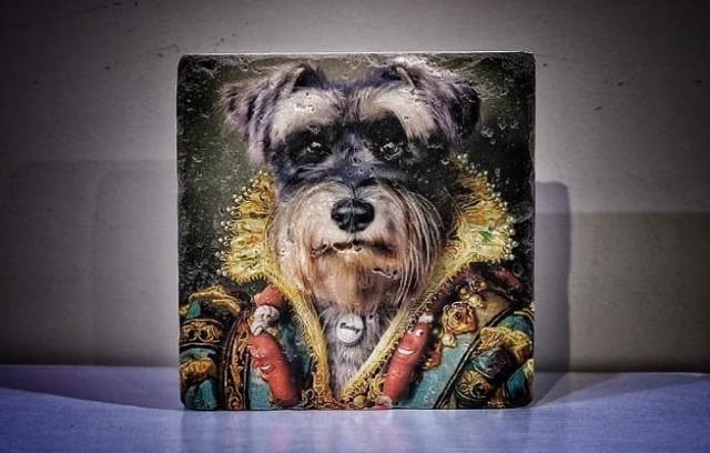 Działający w Podański psi hotelik Hakuna Matata organizuje licytacje na rzecz bezdomnych psów będących pod jego opieką