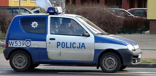 Źródło: http://commons.wikimedia.org/wiki/File:Fiat_Seicento_Policja.jpg