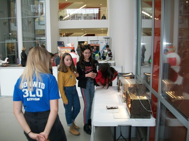 """Ponad 700 uczniów szkół podstawowych i gimnazjów oraz przedszkolaków z całego Podkarpacia wzięło udział w  """"Skrzydlatorium -  Jesiennym Pikniku Naukowym."""