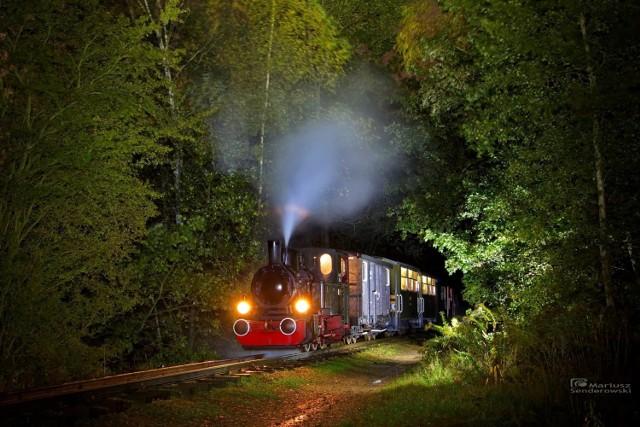 Górnośląskie Koleje Wąskotorowe cieszą się coraz większą popularnością!