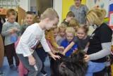 Przedszkole nr 1 w Skierniewicach. Dzieciaki zebrały karmę dla psów ze schroniska ZDJĘCIA