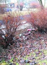 Życie po śmieciach: Dalej tropimy zaśmiecone miejsca