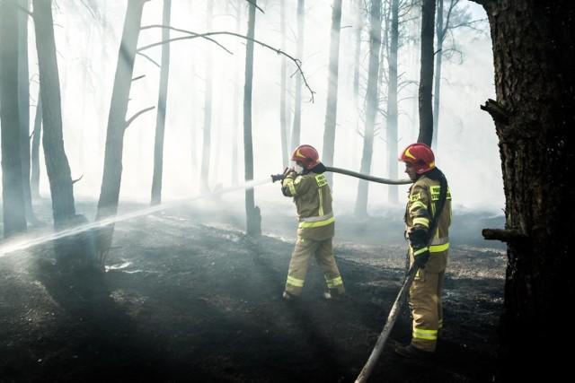 To był pracowity dzień dla strażaków z Bydgoszczy