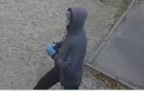 Gniezno. Nieznana osoba malowała sprayem po budynku sanepidu. Szuka ją policja
