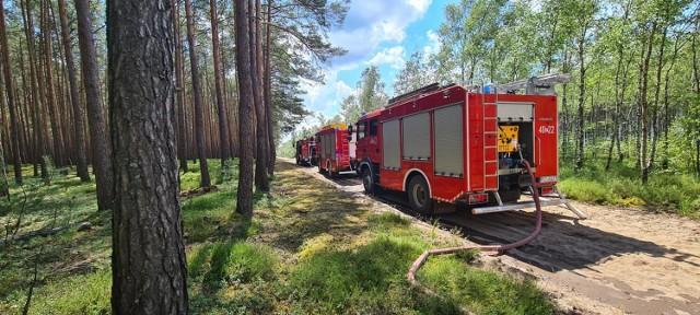 Pożar w lesie w okolicach Klempicza