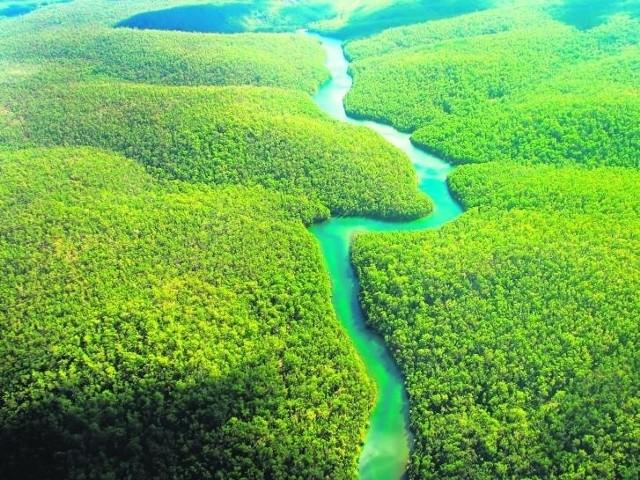 Naukowcy uznali, że Amazonka liczy aż 7040 km, jest więc o prawie 200 km dłuższa od Nilu