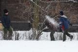 Pogoda: Zima jeszcze przez tydzień [PROGNOZA]