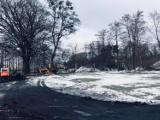 Będzie więcej zadbanej zieleni w Lublińcu. Trwają prace przy ulicy Sportowej