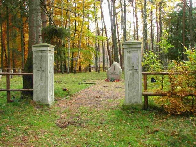 Cmentarz w Zalesinie. Widok obecny.