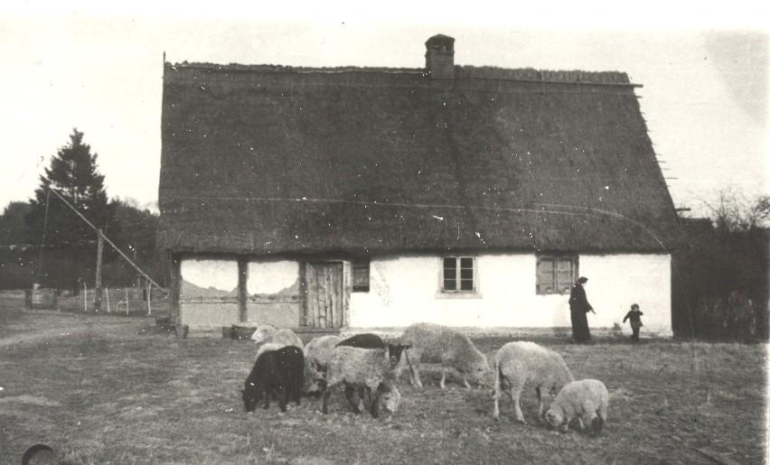 Zalesin, jeden z domów Sióstr Benedyktynek-Samarytanek. Lata...