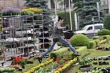 Drzewka, krzewy, rośliny ogrodowe. Trwają wiosenne nasadzenia. Zobaczcie, jakie są ceny sadzonek w Jaśle [22.04]