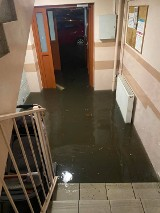 Oleśnica pod wodą. Ulewa zalała ulice, piwnice i klatki schodowe. Interweniuje straż z całego powiatu (ZDJĘCIA, WIDEO)