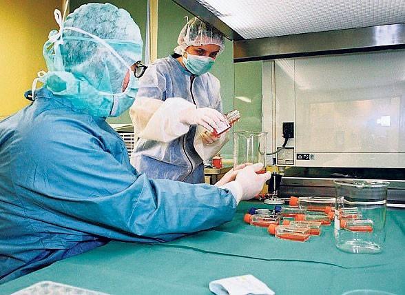 Projekt zakłada skuteczną izolację i hodowlę nowych komórek serca