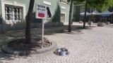 Miski z wodą dla zwierząt pod Urzędem Miasta w Szczecinie. Woda dla spragnionych czworonogów
