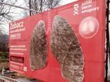 Nowy Sącz. Płuca w Chełmcu czernieją z dnia na dzień. Tym oddychają sądeczanie [ZDJĘCIA]
