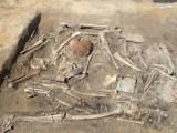 W powiecie świeckim podczas budowy drogi S5 znaleziono szczątki radzieckich żołnierzy. Zobacz zdjęcia