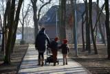 Centrum Ochrony Bioróżnorodności w Oleśnie. Park miejski już gotowy po modernizacji. Jak wygląda?