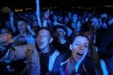 Najważniejsze koncerty w Poznaniu w lutym 2020: Kto wystąpi? Sprawdź!