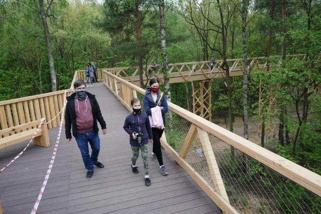 Na drewnianej ścieżce w koronach drzew ma odbyć się impreza techno. Zaplanowane wydarzenie miałoby trwać całą noc, od 19 do 4. Leśnicy są oburzeni.
