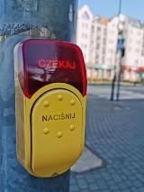 Przyciski na przejściach dla pieszych w Kaliszu znów aktywne