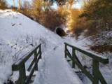 Zimowy spacer o Chłapowie. W gminie Władysławowo, Rudniku i na plaży w Chłapowie biało! Wybierz się z nami na przechadzkę!   ZDJĘCIA