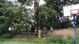 Wichura przeszła nad powiatem. Wiemy, ile razy interweniowali strażacy! (AKTUALIZACJA)