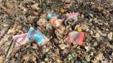 Zielona Góra. Co za wstyd! Park Poetów to teraz wielkie śmietnisko. Zanieczyszczamy najlepsze miejsca rekreacyjne w mieście