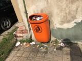 Pleszew. Śmieci wylewają się z ulicznych koszy! To małe wysypiska śmieci! Kiedy to się skończy?