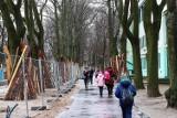 Wielki remont parku Sienkiewicza w Łodzi. Zobaczcie jak się zmienia [ZDJĘCIA]