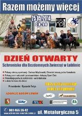 Razem możemy więcej: Odwiedź Schronisko dla Bezdomnych Zwierząt w Lublinie