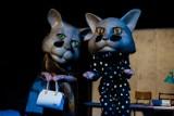 Kraków. Gdzie nie spojrzysz, tam kot. Teatr Słowackiego szykuje się do nowej premiery