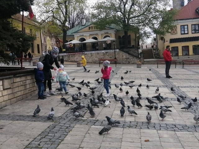 Gołębie na płycie Rynku w Sandomierzu stały  się atrakcją dla najmłodszych.
