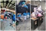 Jelenia Góra walczy ze śmieciami. Zobacz brzydkie nawyki mieszkańców miasta