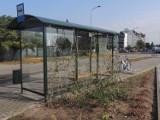 Łańcuchy na przystanku autobusowym w Wągrowcu. Po co je zamontowano?