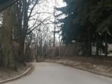 Gmina Sandomierz nie przejmie od powiatu ulic Żeromskiego i Salve Regina. Zobacz, co to oznacza dla mieszkańców