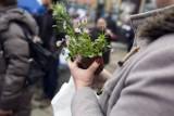 Zioła i kwiaty w zamian za śmieci. W Warszawie odbędzie się nietypowa akcja ekologiczna