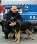 Policyjny pies Luks pomógł w ustaleniu sprawcy włamania do domu w Nowosielcach