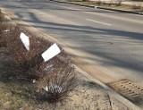 Dokumenty walały się na ulicy Koszalińskiej w Szczecinku. Ktoś zgubił? [zdjęcia]