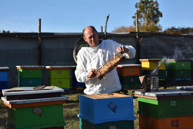 - W czasie przymrozków miód pszczół nie interesował, one musiały utrzymać 34 stopnie Celsjusza, by uratować potomstwo - twierdzi Sławomir Wnuk, pszczelarz z Lniana
