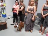 W  częstochowskiej Konduktorowni spotkali  miłośnicy psów i kotów [ZDJECIA]