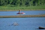 Niski poziom wody w Jeziorze Solińskim. Na Wyspę Energetyka można już dojść pieszo [ZDJĘCIA]